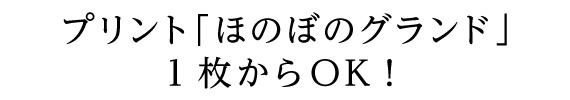プリント「ほのぼのグランド」1枚からOK!